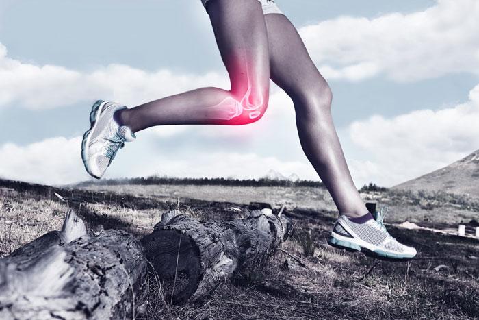 Sportarzt Oldenburg – Verletzungen und Beschwerden des gesamten Bewegungsapparates mit dem Schwerpunkt Schulter-, Knie- und Sprunggelenk-Behandlung